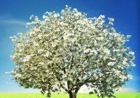 Германия-там, където парите растат по дърветата
